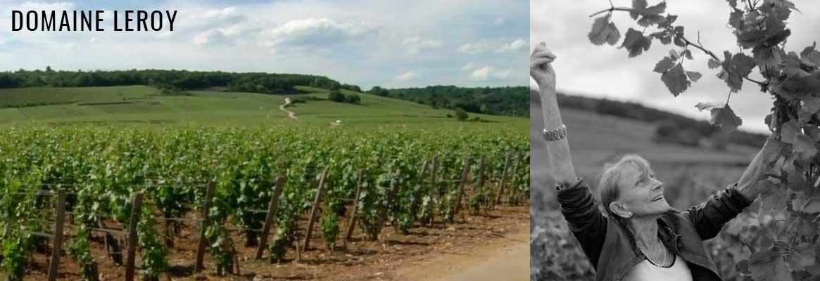 DOMAINE LEROY | Grands vins de Bourgogne en coffrets cadeaux