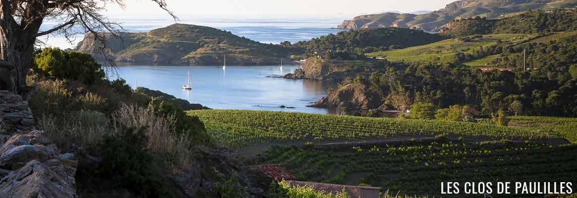 Domaine Les Clos des Paulilles, grands vins de Collioure