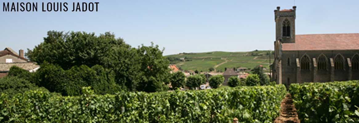 Maison Louis Jadot - Grands vins de Bourgogne