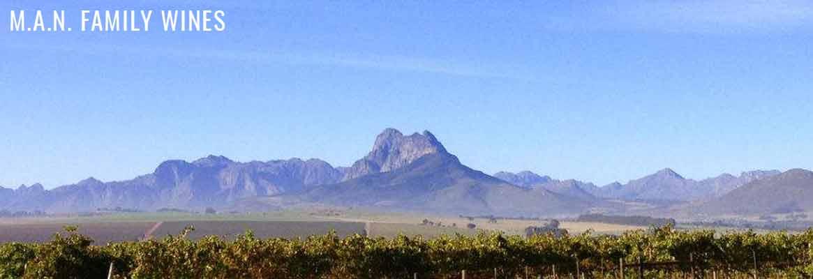 MAN Family Wines, vins d'Afrique du Sud, Pinotage, Chenin blanc