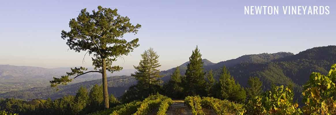 Newton Vineyards, grands vins californiens de la Napa Valley