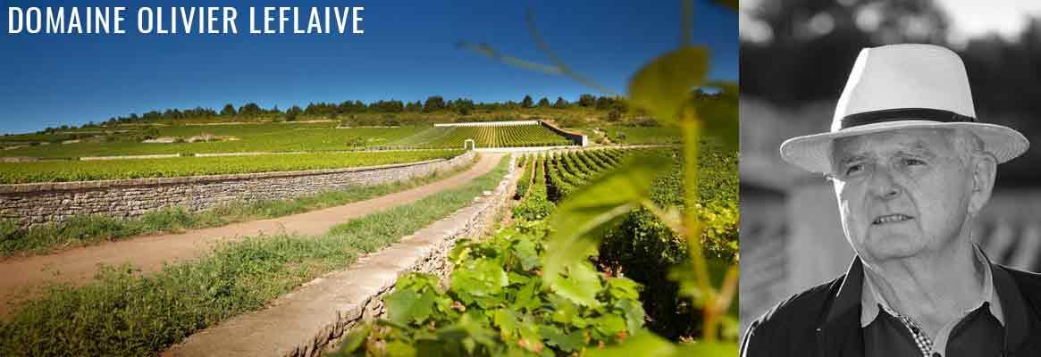 Domaine Olivier Leflaive, grands vins blancs de la Côte de Beaune