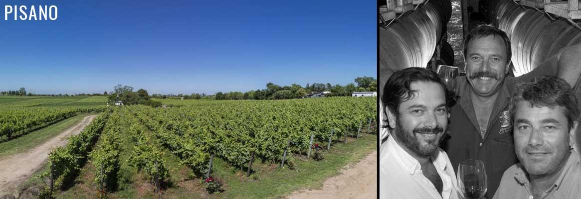 Bodega Familia Pisano, grands vins d'Uruguay