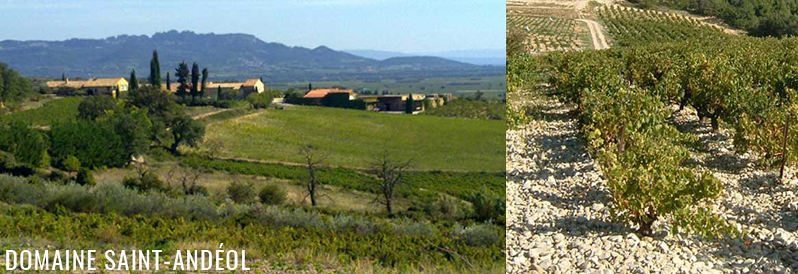 Grands vins de Cairanne, Domaine Saint-Andéol
