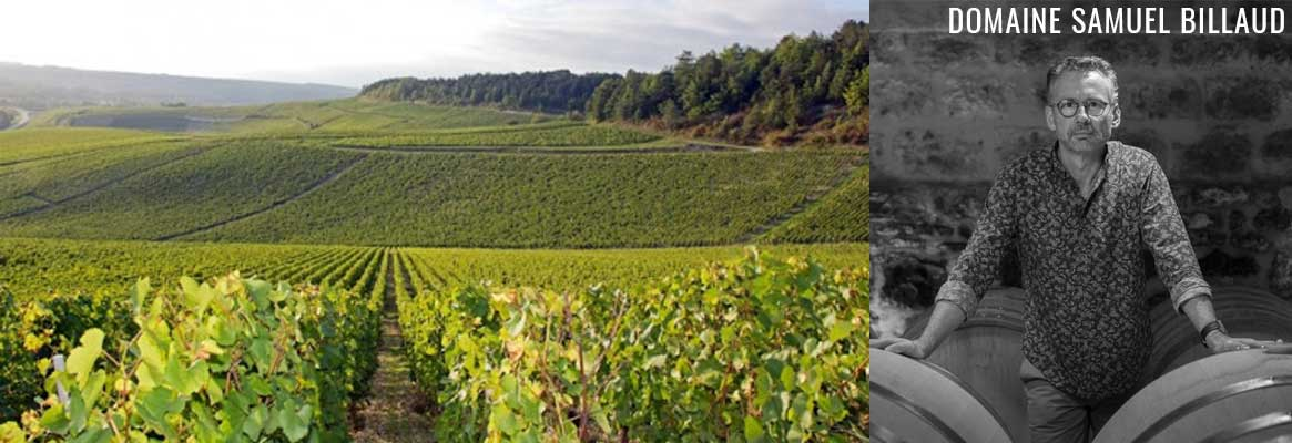 Domaine Samuel Billaud, Grands vins de Chablis