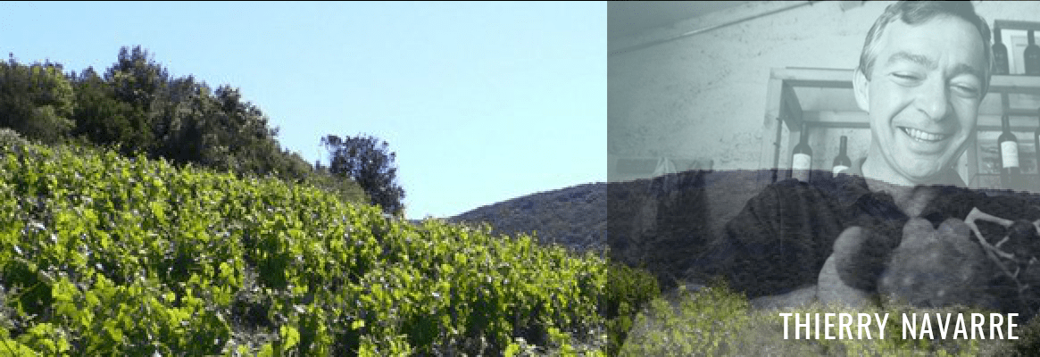 Thierry Navarre, vins du Languedoc, Saint-Chinian, cépages rares, Ribeyrenc, Oeillades, Lignère