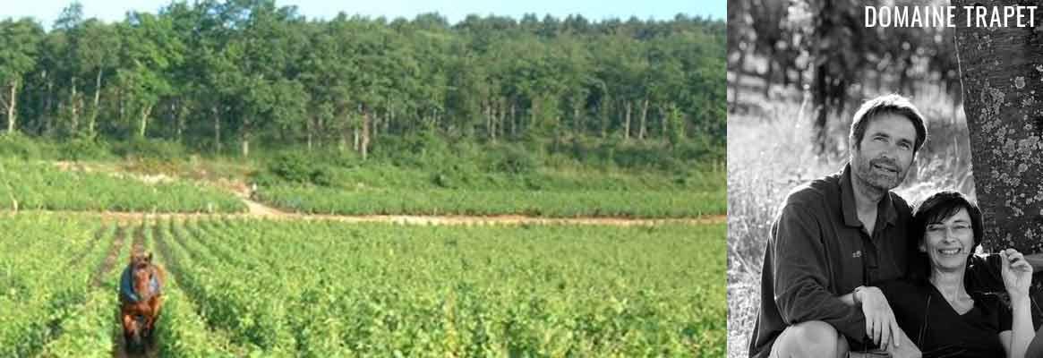 Domaine Trapet, grands vins de Bourgogne à Gevrey-Chambertin