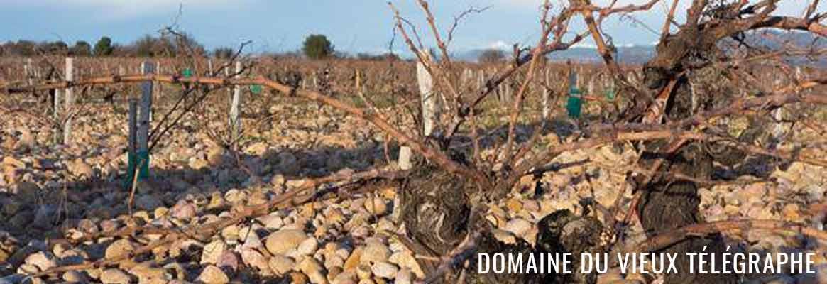 Grands vins de Châteauneuf-du-Pape, Domaine du Vieux Télégraphe