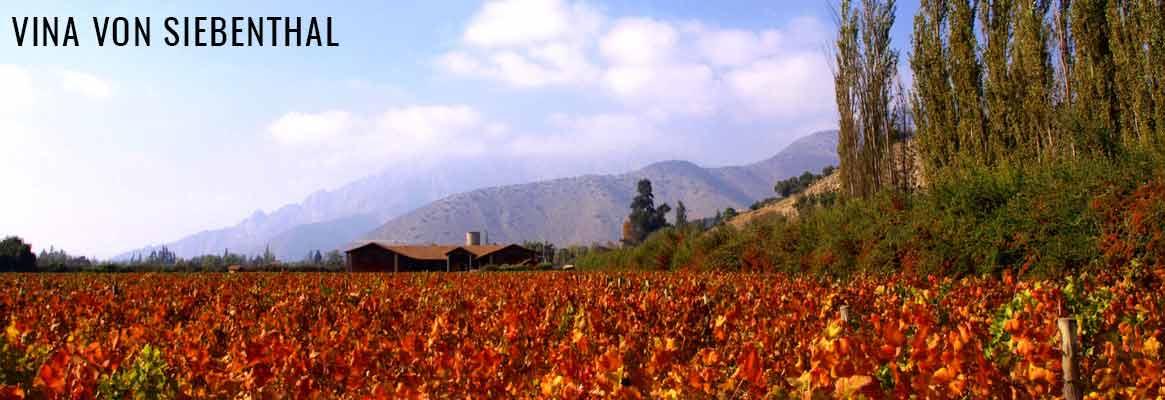 Vina von Siebenthal, grands vins du Chili