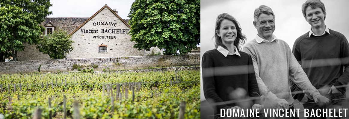Domaine Vincent Bachelet, grands vins blancs et rouges de Bourgogne