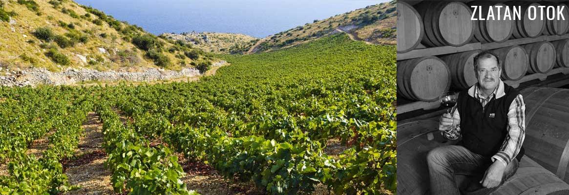 Domaine Zlatan Otok, grands vins de Croatie