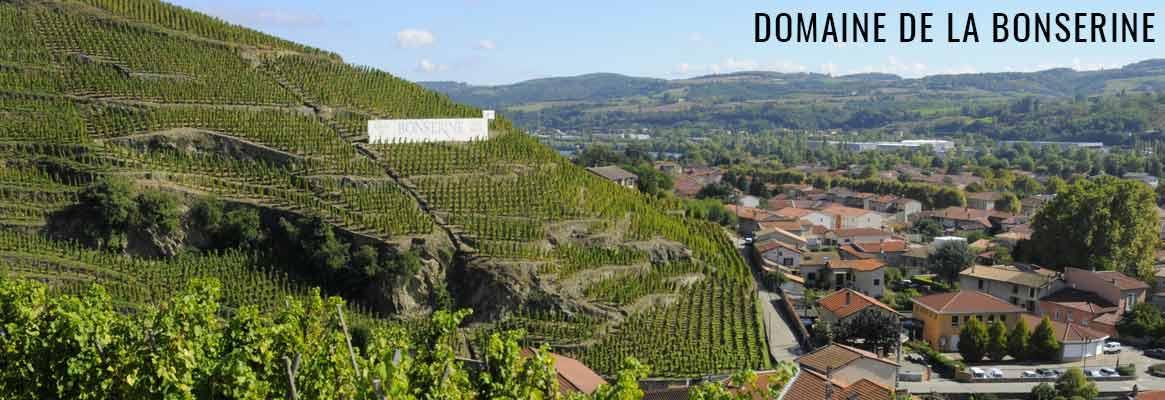 Domaine de Bonserine, grands vins de Côte-Rôtie et Condrieu