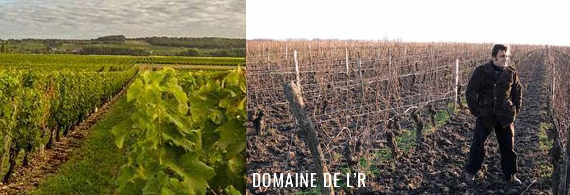 vins de Chinon et de Loire du Domaine de L'R