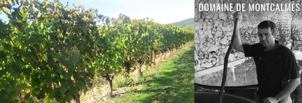 Domaine de Montcalmès, grands vins du Languedoc