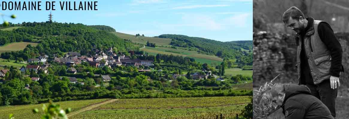 Domaine de Villaine, Vins de Bouzeron, Mercurey, Rully et Santenay