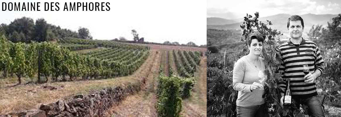 Domaine des Amphores, vins BIO de Condrieu, Saint-Joseph et IGP Collines Rhodaniennes