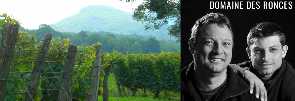 Domaine des Ronces, vins de Jura en Biodyanmie certifiée Demeter