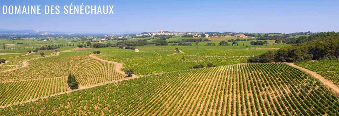 Domaine des Sénéchaux, grands vins de Châteauneuf-du-Pape