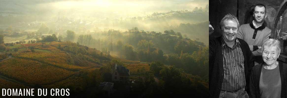 Domaine du Cros, vins de l'AVeyron en AOP Marcillac, cépage Fer Servadou