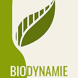 Vins en biodynamie - La Bouteille Dorée
