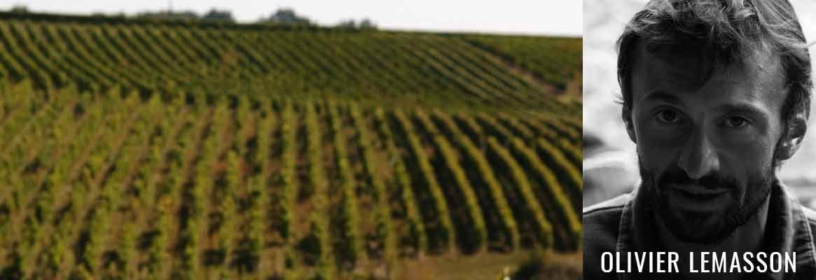 Olivier Lemmason, vins natures