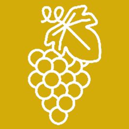 Les vins de Grenache