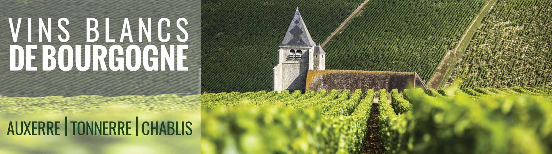 Vins de blancs de Bourgogne Auxerre, Tonnerre et Chablis