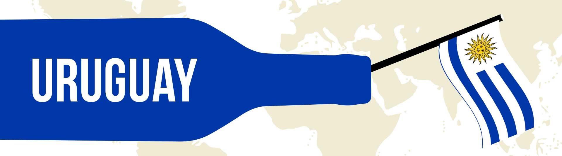 Découvrez les vins d'Uruguay