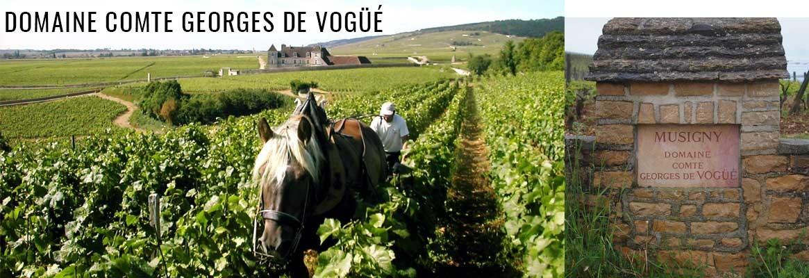 Domaine Comte Georges de Vogüé